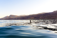 Woman swimming in sea against clear sky during sunset - CAVF28402