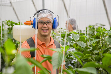 Young man working in greenhouse spraying fertilizer on plants - ZEF15214