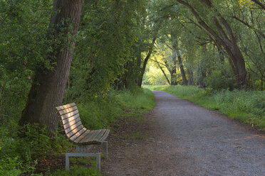 Germany, Ludwigshafen, Aachried, wooden bench and empty way - SHF02012
