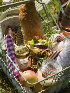 Wire basket with food on grass - FOLF00342