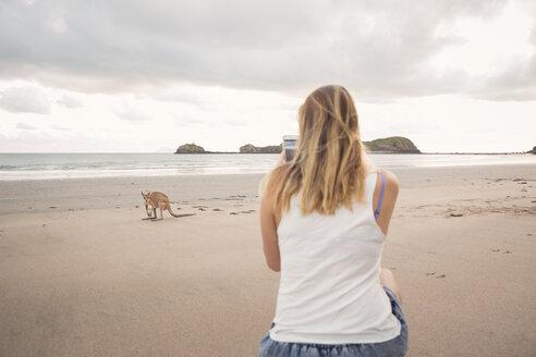 Woman taking picture of Kangaroo on beach - FOLF00609