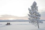 Three men in field in winter - FOLF00851