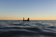 Side view of woman lying on surfboard in sea during sunset - CAVF28819