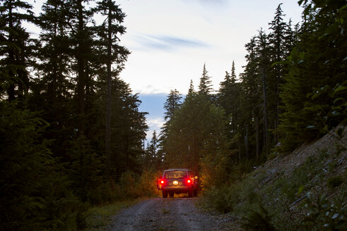 Off-road vehicle moving on road amidst trees during at dusk - CAVF30231