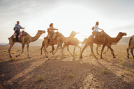 Tourists riding on camels at desert against sky during sunny day - CAVF30723