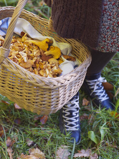 Close-up of woman with basket of chanterelle mushrooms - FOLF02836
