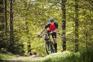 Mature man riding on mountain bike through forest - FOLF02938