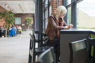 Young blonde student studying at table in campus cafeteria - FOLF02992