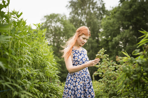 Woman photographing nature - FOLF03689