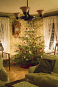 Illuminated Christmas tree in living room - FOLF03902