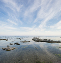 Rock formations on coastline - FOLF04067