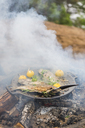 Food cooking on a campfire - FOLF04778