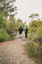 Rear view of couple hiking - FOLF04859