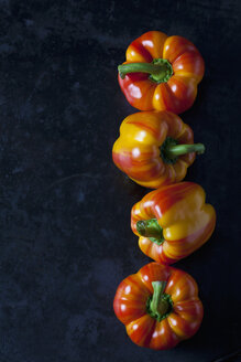 Row of four tiger bell peppers on dark metal - CSF29026