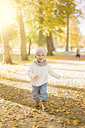 Little boy playing in autumn leaves - FOLF05237
