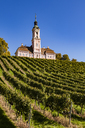 Germany, Baden-Wuerttemberg, Lake Constance district , Birnau Basilica and vineyard - WDF04533