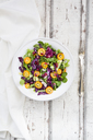 Mixed salad with kumquat, red cabbage and pomegranate seeds - LVF06834
