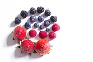 Strawberries, blackberries, raspberries and blueberries - CMF00791