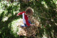 High angle view of boy walking on dry leaves at grassy field in yard - CAVF31820
