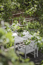 Tree branches and white tables with chairs on patio - FOLF05950
