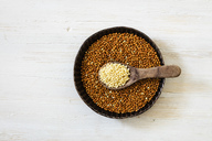 Bowl of brown millet and spoon of Golden millet - EVGF03343