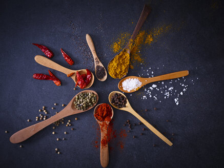Variety of spices on wooden spoons - KSWF01896