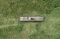 Top view of a young woman lying on boardwalk - MGOF03763