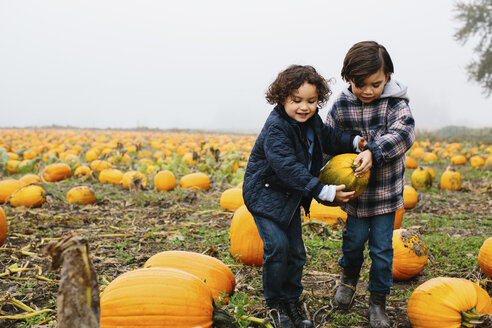Brothers carrying pumpkin while standing at farm during foggy weather - CAVF32175