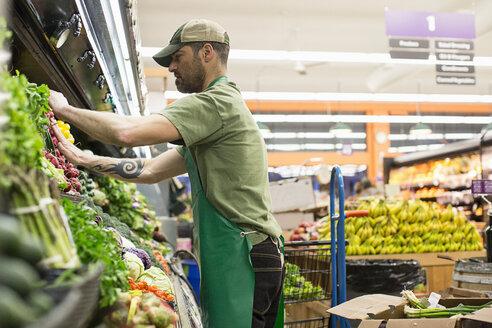 Side view of worker arranging vegetables on shelves at supermarket - CAVF33184