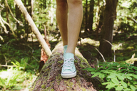Low section of female hiker walking on log in forest - CAVF33451