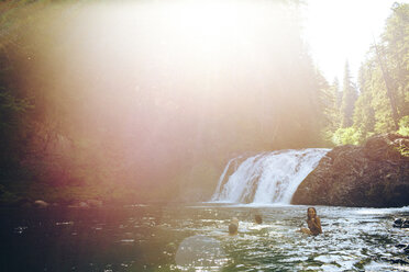 Friends swimming in river at forest during sunny day - CAVF33466