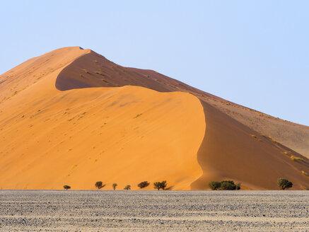 Africa, Namibia, Namib desert, Naukluft National Park, Sossusvlei, Dune 45 - RJF00768