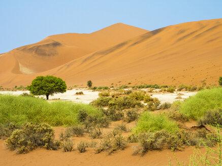 Africa, Namibia, Namib desert, Naukluft National Park, Sossusvlei - RJF00771