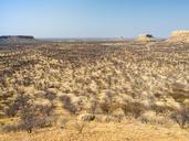 Africa, Namibia, Damaraland, scrubland - RJF00780
