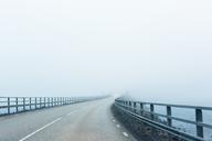 Empty bridge with fog - FOLF06700
