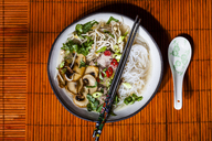 Vietnamese rice noodle soup with mushrooms and beef - SBDF03522