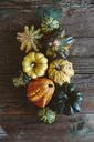 Various Ornamental pumpkins on wood - GIOF03880