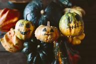 Painted Jack O'Lanterns - GIOF03907