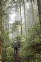 Rear view of women hiking amidst trees in forest - CAVF33983