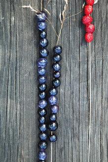 Beaded blueberries - FOLF09531