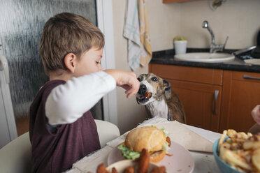 Boy feeding dog at dining table at home - SKCF00388