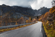 Norway, Lofoten Islands, empty road surrounded by rock face - WVF00947