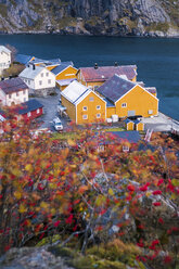 Norway, Lofoten Islands, Nusfjord, houses at the coast - WVF00953