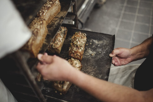 Midsection of baker holding fresh baked breads in tray on cooling rack at bakery - MASF00080