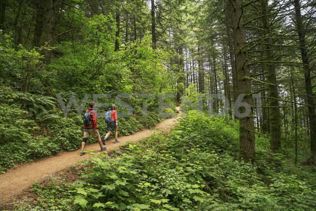 Friends hiking on trail at Crater Lake National Park - CAVF34660