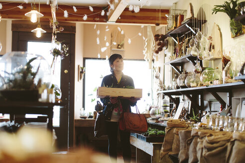 Customer carrying crate while shopping in plant shop - CAVF34765