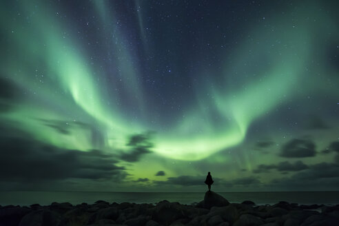 Norway, Lofoten Islands, Eggum, man standing on rock and watching northern lights - WVF01026