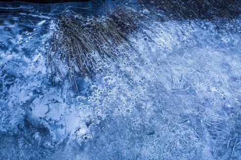 Norway, Lofoten Islands, frozen water - WVF01060