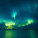 Norway, Lofoten Islands, Eggum, Northern lights - WVF01084