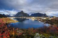 Norway, Lofoten Islands, Reine - WVF01086